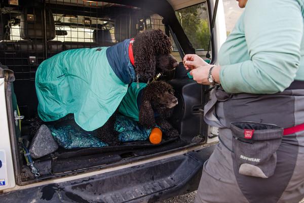 RUFFWEAR® Hunde-Handtuchmantel Dirtbag™