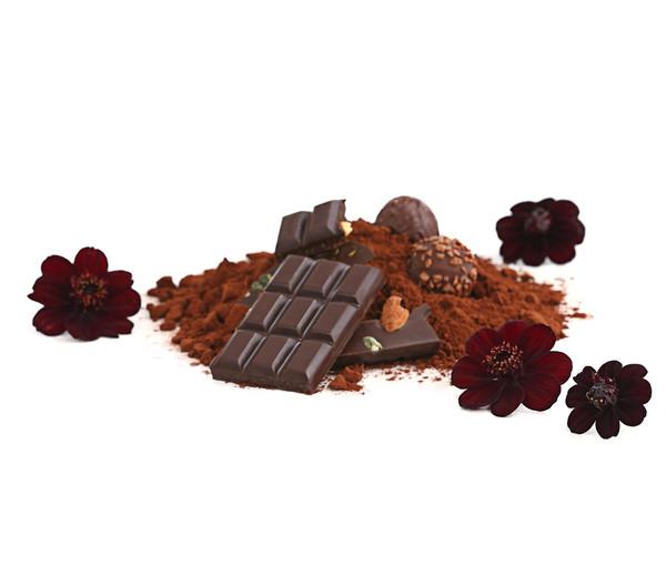 Schokoladenblume - Schokoladen-Kosmee - Schwarze Kosmee