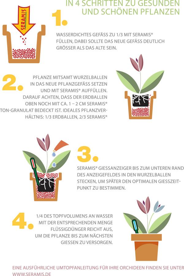 Seramis Spezial-Substrat für Orchideen