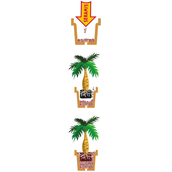 Seramis Spezialsubstrat für Palmen, 7 l