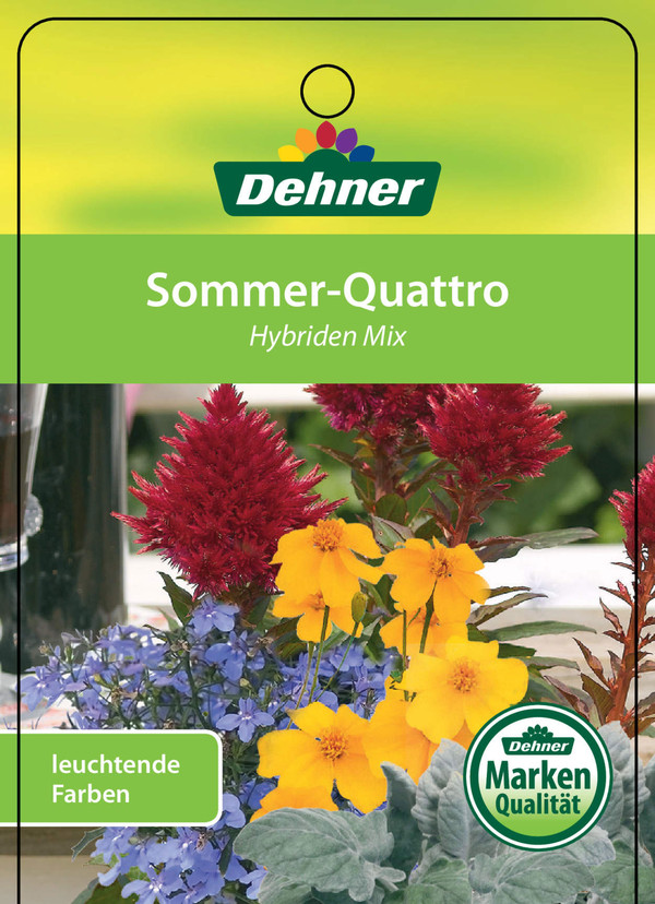 Sommer-Mix