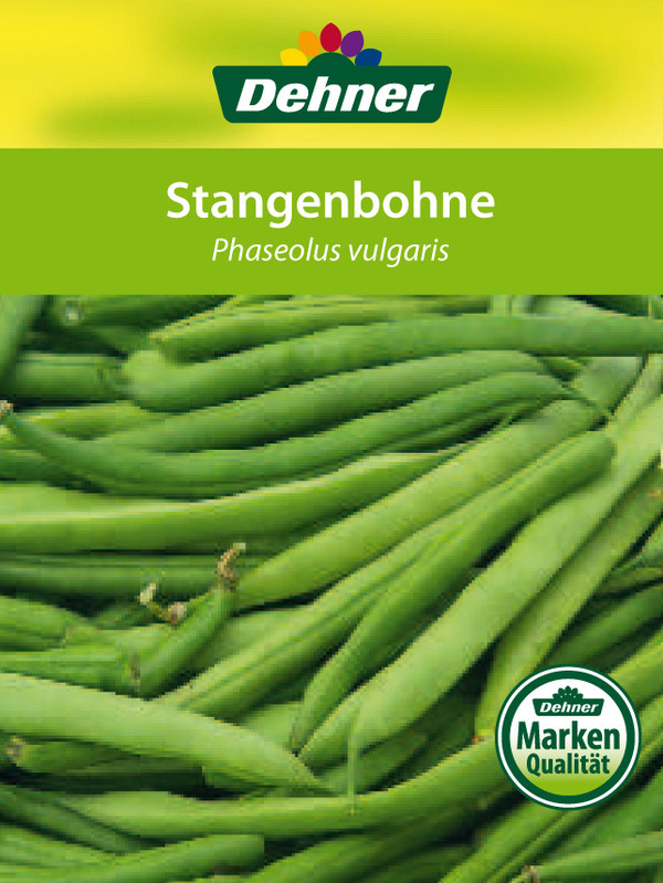 Stangenbohne