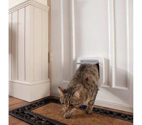 SureFlap Katzenklappe mit Mikrochiperkennung, 21 x 21 cm
