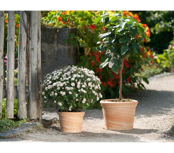 Terrakotta-Topf Toscana, rund