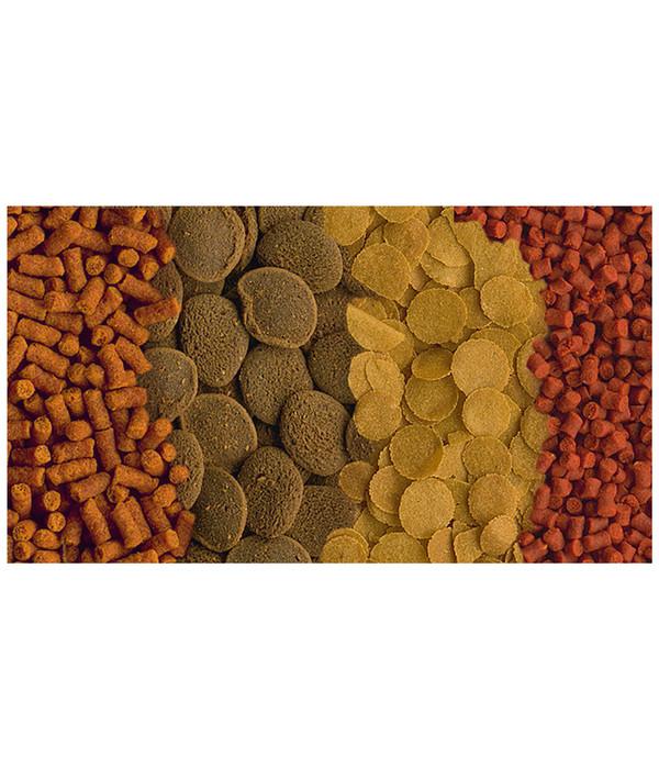 Tetra Crusta Menu Fischfutter für Krebse und Garnelen, 100 ml
