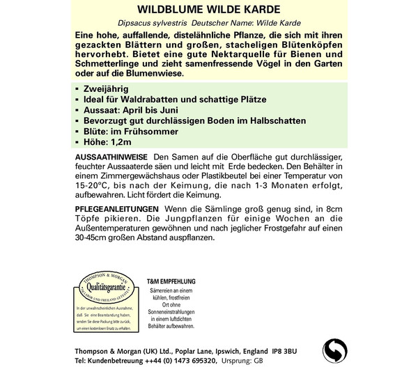 Thompson & Morgan Samen Wildblume 'Wilde Karde'