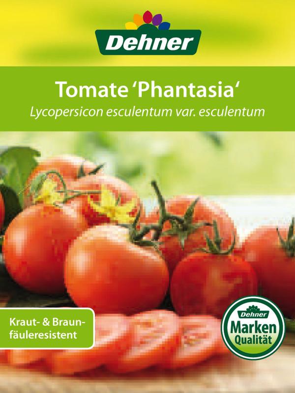 Tomate 'Phantasia'