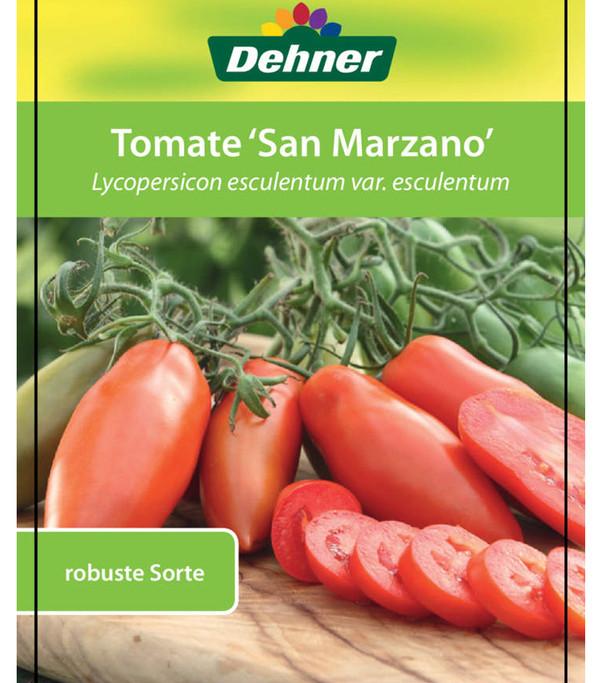Tomate 'San-Marzano'
