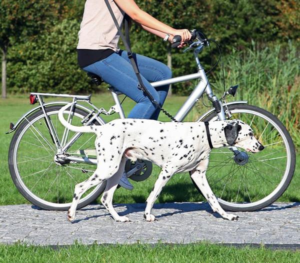 Trixie Fahrrad- und Joggingleine, verstellbar