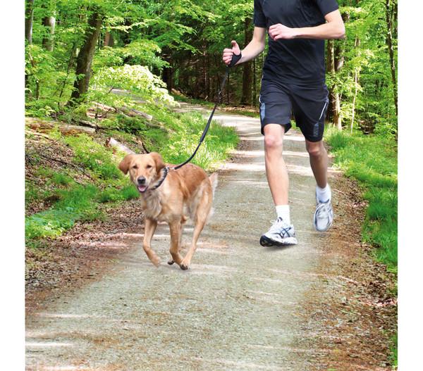 Trixie Joggingleine für Hunde, schwarz