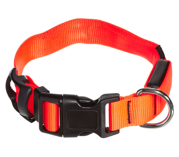 "Trixie Leuchthalsband ""Flash"", orange"