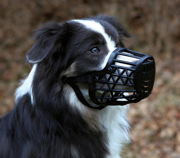 Trixie Maulkorb für Hunde, Kunststoff
