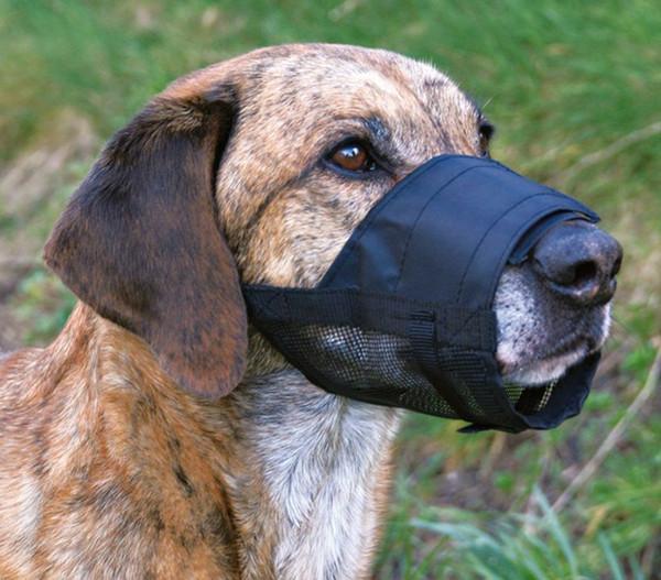 Trixie Maulkorb mit Netzeinsatz für Hunde, Polyester