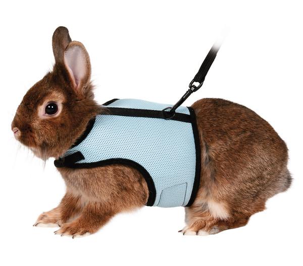 Trixie verstellbare Kaninchengarnitur, blau