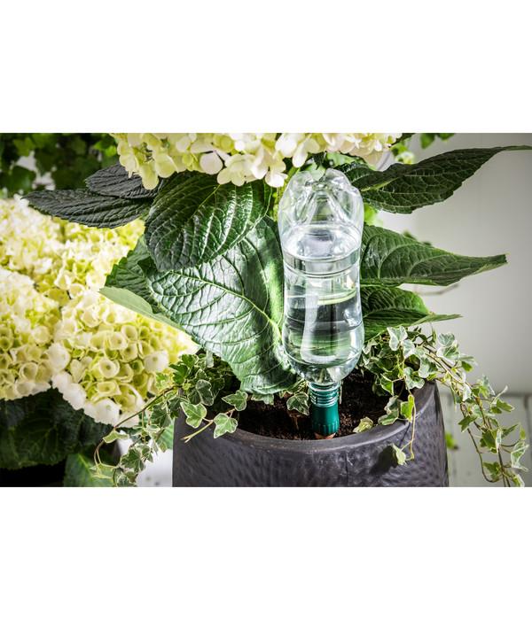 Tropf-Blumat Flaschenadapter mit Tonkegel für Topfpflanzen, 3 Stk.