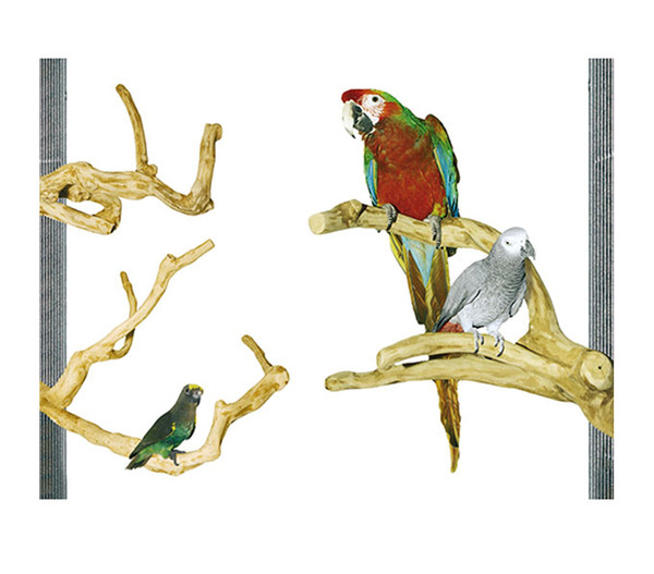 Wagner's Papageien Paradies Java Kletterstange Sittiche und Papageien small