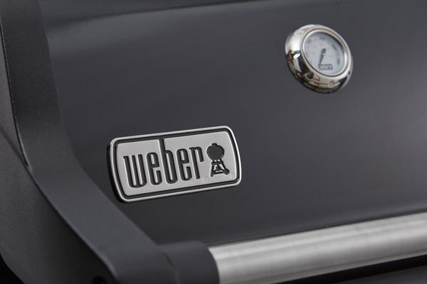 Weber Gasgrill Spirit E GBS