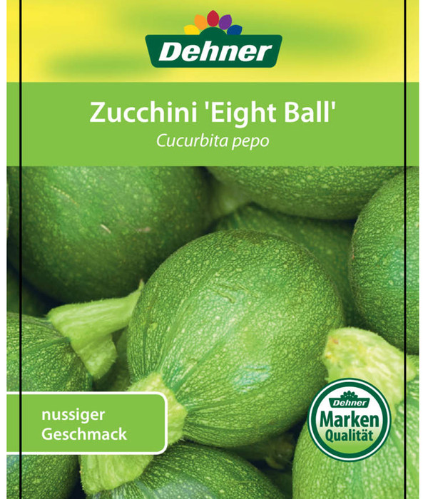 Zucchini 'Eight Ball'