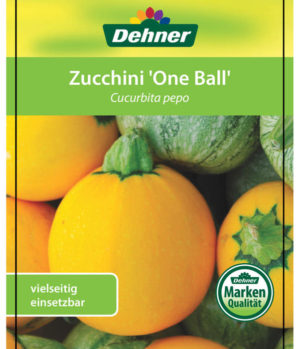 Zucchini 'One Ball', Pflanze