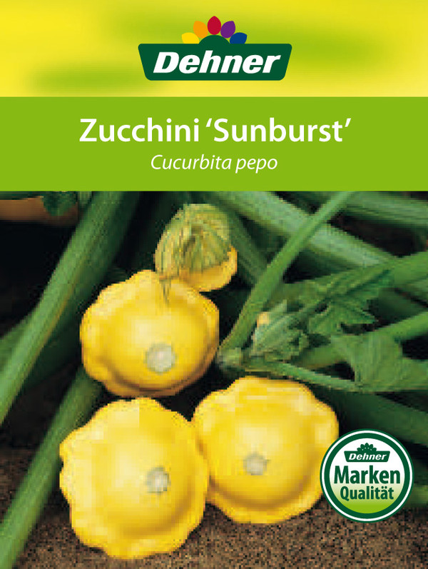 Zucchini 'Sunburst'