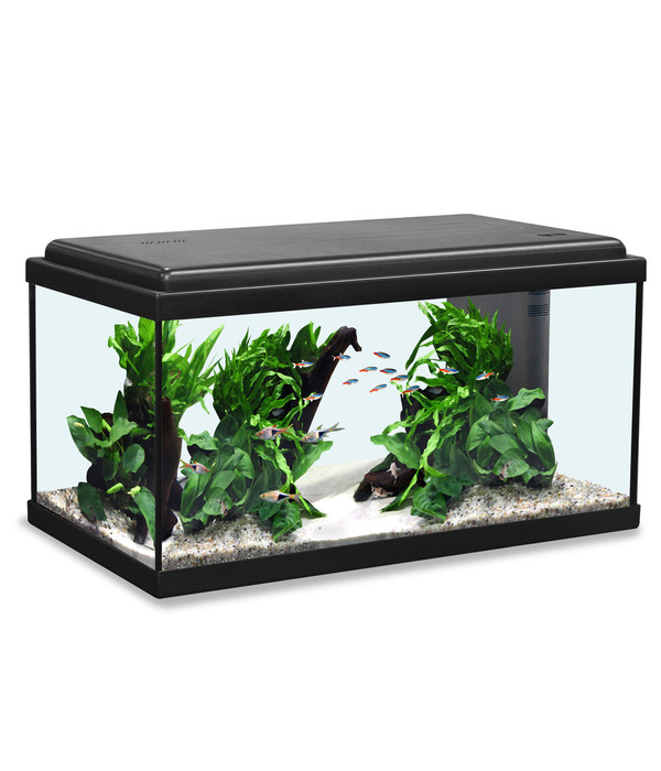 aquatlantis advance 60 led aquarium set dehner. Black Bedroom Furniture Sets. Home Design Ideas