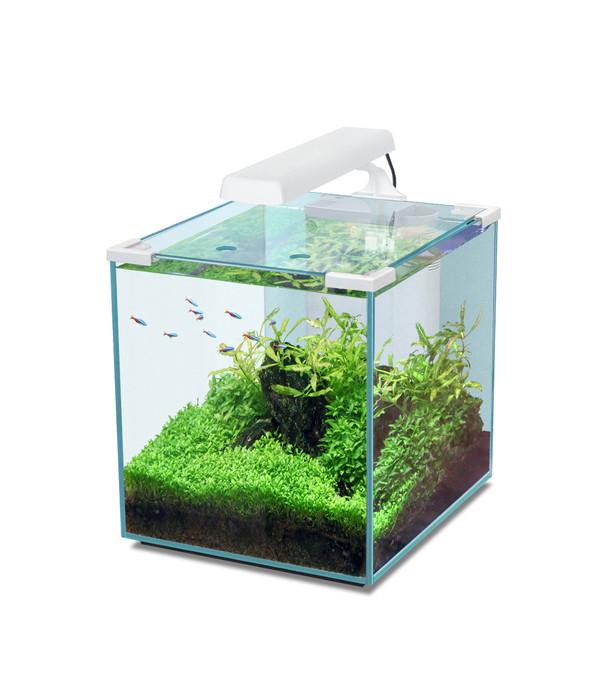 aquatlantis aquarium nano cubic 30 dehner. Black Bedroom Furniture Sets. Home Design Ideas
