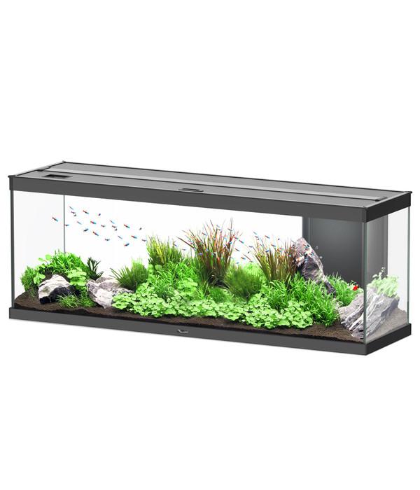 aquatlantis aquarium style led 120x40 dehner. Black Bedroom Furniture Sets. Home Design Ideas