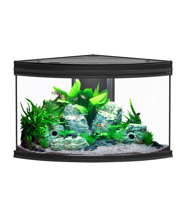 aquatlantis fusion corner 100 aquarium dehner. Black Bedroom Furniture Sets. Home Design Ideas