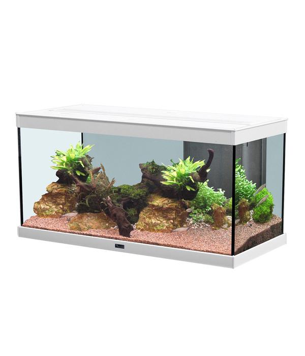 aquatlantis style led 80x35 aquarium dehner. Black Bedroom Furniture Sets. Home Design Ideas