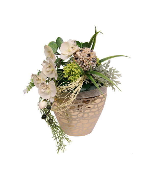 arrangement orchidee in einer vase dehner. Black Bedroom Furniture Sets. Home Design Ideas