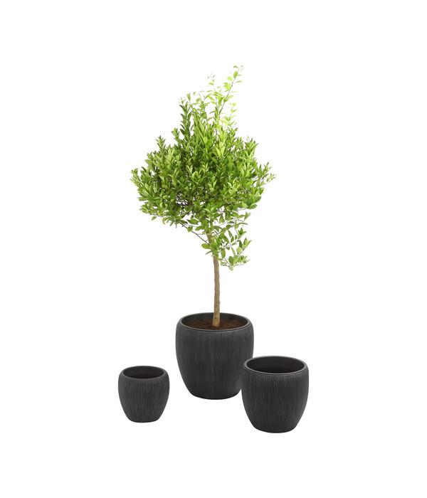 dehner polyresin pflanzvase in riffeloptik grau dehner. Black Bedroom Furniture Sets. Home Design Ideas