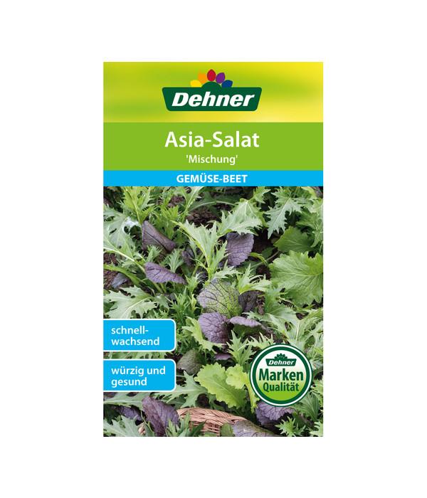 Dehner Samen Asia-Salat \'Mischung\'