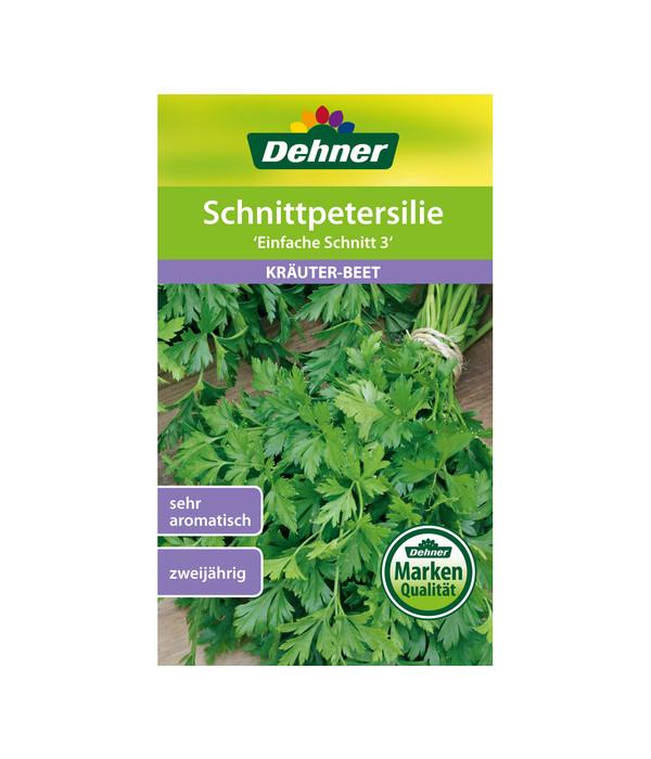 """glattblättrig aromatisch Kräuter Samen Petersilie /""""Einfache Schnitt 3/"""""""