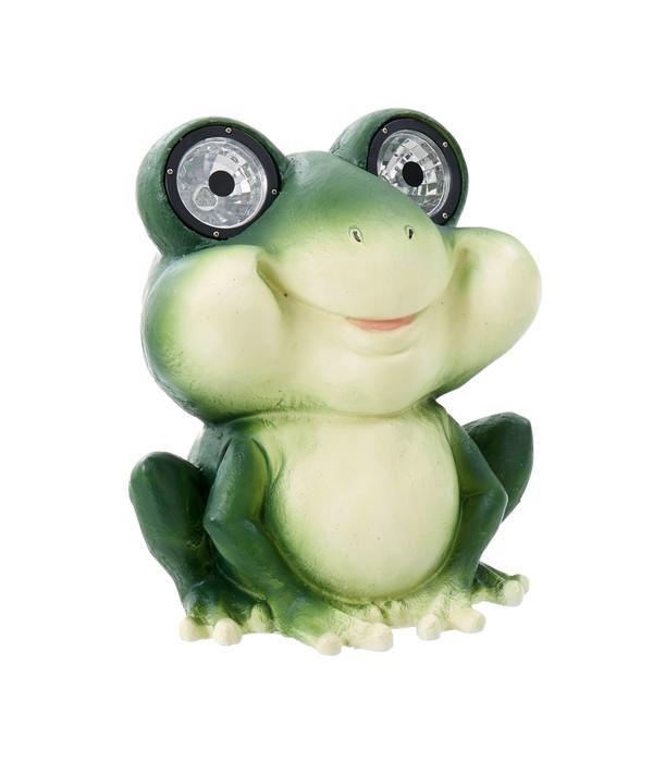 Dehner Solarleuchte 'Frosch' | Dehner