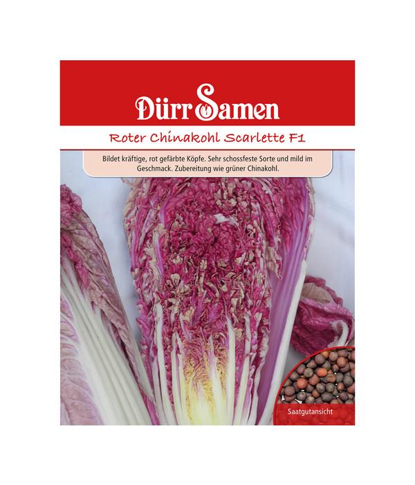 chinakohl pflanzen tipps garten pflege, dürr samen roter chinakohl 'scarlette f1' | dehner, Design ideen