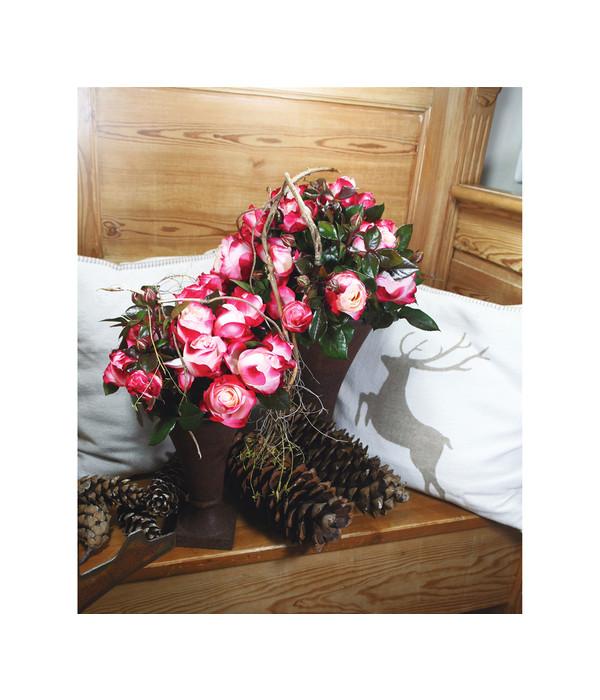 edelrose 39 nostalgie 39 dehner. Black Bedroom Furniture Sets. Home Design Ideas