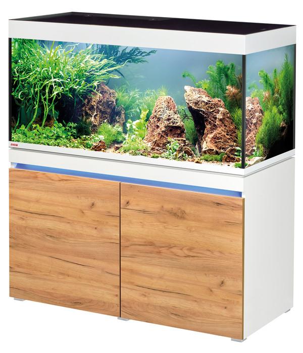 Aquarien Aquarium Seien Sie Im Design Neu