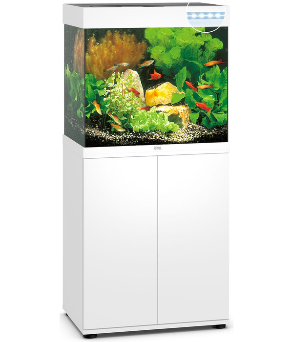 juwel aquarium kombination lido 120 led dehner. Black Bedroom Furniture Sets. Home Design Ideas