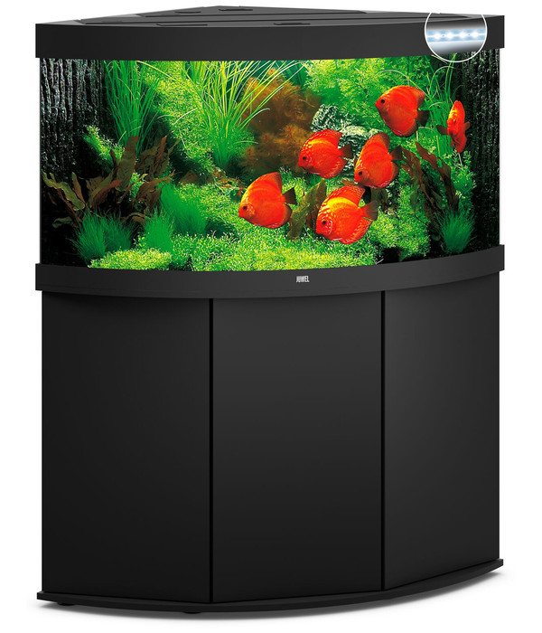 juwel aquarium kombination trigon 350 led dehner. Black Bedroom Furniture Sets. Home Design Ideas