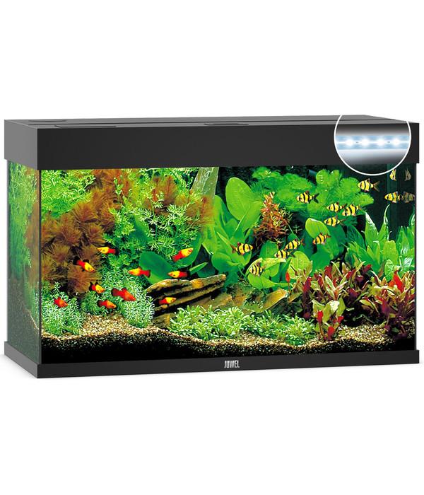 juwel aquarium rio 125 led dehner. Black Bedroom Furniture Sets. Home Design Ideas