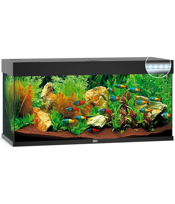 juwel aquarium rio 240 led dehner. Black Bedroom Furniture Sets. Home Design Ideas