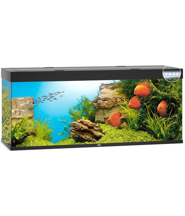 juwel aquarium rio 450 led dehner. Black Bedroom Furniture Sets. Home Design Ideas