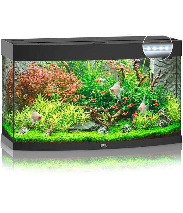 juwel aquarium vision 180 led dehner. Black Bedroom Furniture Sets. Home Design Ideas
