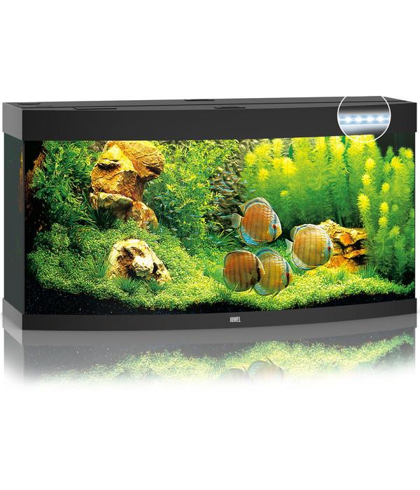 juwel aquarium vision 260 led dehner. Black Bedroom Furniture Sets. Home Design Ideas
