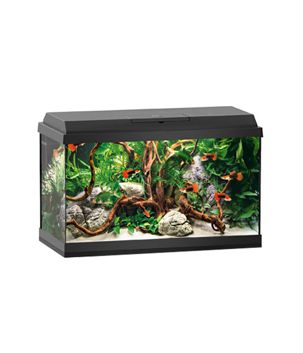 juwel primo 60 led aquarium set schwarz dehner. Black Bedroom Furniture Sets. Home Design Ideas