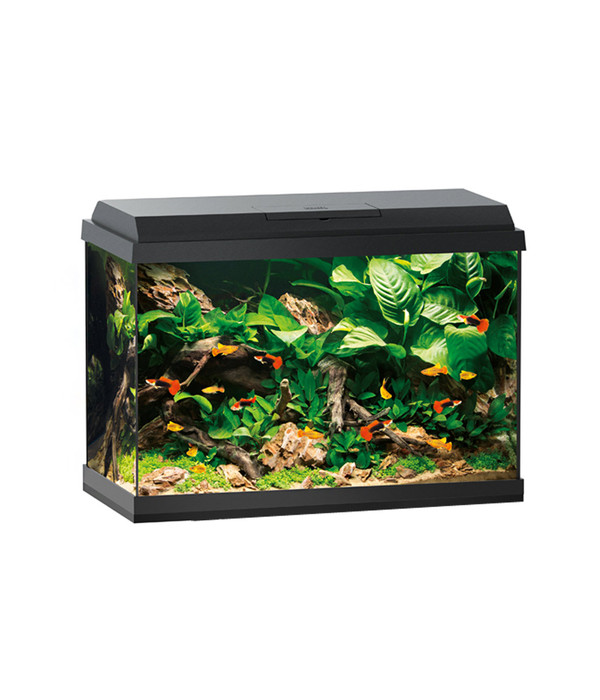 juwel primo 70 led aquarium set dehner. Black Bedroom Furniture Sets. Home Design Ideas