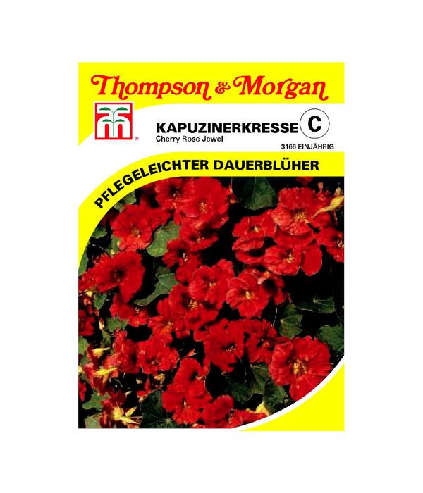 thompson morgan samen kapuzinerkresse 39 cherry rose jewel 39 dehner. Black Bedroom Furniture Sets. Home Design Ideas
