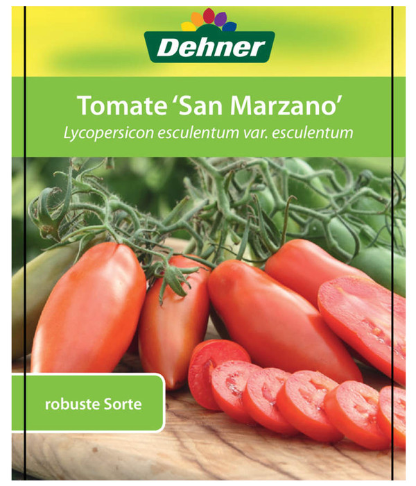 tomate 39 san marzano 39 dehner. Black Bedroom Furniture Sets. Home Design Ideas
