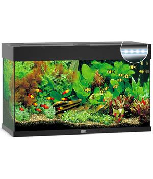 Gut gemocht Aquarium Becken ohne Unterschrank – Top-Auswahl   Dehner XS32