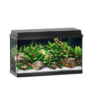Juwel Primo 110 LED Aquarium Set, schwarz